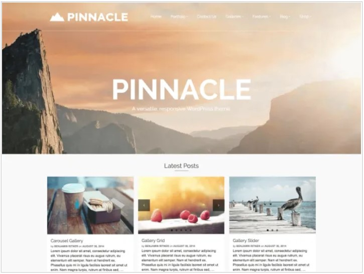 Pinnacle theme
