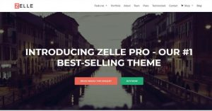 Zelle Pro WordPress Theme