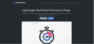 Perfmatters plugin for website speed