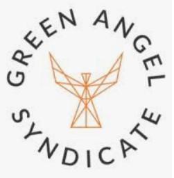green angel syndicate